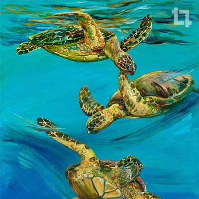 Flight of the Honu